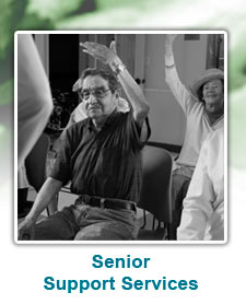 Senior Support Services